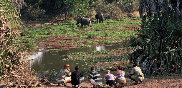 Bushvandring i Lower Zambezi National Park.