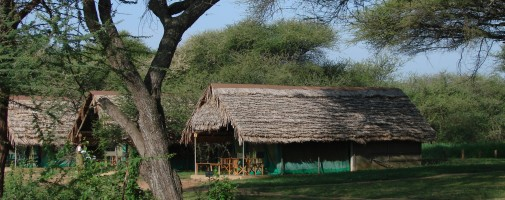 Tarangire Safari Lodge.